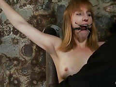 That babe is about to get a harsh punishment that will satisfy her craving for pain. The executor inserts a device in her throat and puts laundry pliers on these cute small tits, inducing her all the pain this babe needs to be satisfied. The weight is pulling her down but she's tied and slowly, her snatch gets ready to be fucked.