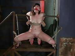 Here's marvelous Sahara Rain, a cute wench with small love melons and a very taut cunt. Sahara has been tied by that wooden structure, ball gagged and her thighs tied wide open. I start rubbing her cunt with a vibrator and that babe burst with pleasure like a fucking whore. Think I should now stuff her taut cunt with something.