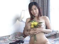 Asian Oriental Flower Series Vol 4