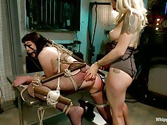 Coral aorta is a busty brunette hair hair milf who enjoys being aroused while she is bound up in bondage devices. She loves having her mouth gagged with a ball as her beautiful domina takes advantage of her position. The hawt blonde milf Lorelei Lee loves gratifying her sex slave with a transparent butt plug.