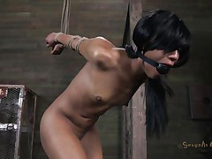 Isn't Nikki a fascinating beauty and hawt too? She's tied, blindfolded and face hole gagged with a ball. A big black male pumps her from behind and rips Nikki's fur pie previous to taking care of her mouth. His white buddy comes to aid him punish this wench and fucks her a-hole from behind also whilst the black one unfathomable face holes her