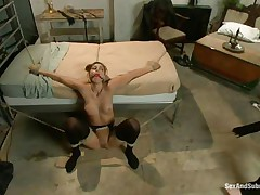 Rilyn Rae is a hot brown haired milf with worthwhile mangos and constricted pussy. The milf is tied on a sofa and has a gag in her mouth. She moans with enjoyment Whilst Danny strikes her big mangos with his leather whip. This guy acquires on top of her, removing her gag, and copulates her face roughly making sure this chick acquires all the knob this chick needs.