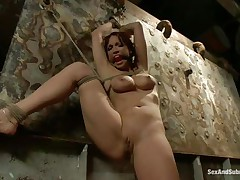 Nicki Hunter is a red haired milf who enjoys having dudes around her while this babe is tied up with ropes. The hot playgirl likes having her throat gagged, because this babe knows this babe will shriek if it wouldn't be for that cute ball gag. Dude comes and removes her ballgag, and begins to fuck her pussy, slamming her on the wall.