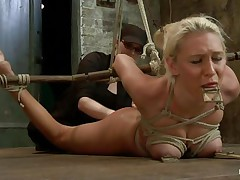Katie in in big trouble and that playgirl likes it a lot! Her domme tied her up and putted a mouse trap on her tongue and nipples. This playgirl is getting fingered from behind as that playgirl lays there on the floor all tied up, look at her squeezed boobs, that playgirl enjoys her torture and probably the treatment will become harsher.