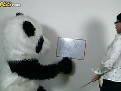 Panda's need education likewise but they need a precious fuck even more! Luckily for this particularly panda his teacher is a hottie and sexually excited too. The math lesson ends but the fucking one just begins as that hawt dark brown takes off her pants and picks her favourite sex toy. Do u like math or would u rather see this