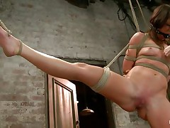 With weights added to her big nipples, sexually excited milf Mia Gold is tied up and has one leg in the air for a more excellent muff domination. Having her face aperture gagged, this hottie can only moan. Her mistress sticks a big marital-device in that wet muff of hers and a sex tool on her clit to drive her crazy. Will this hottie cum soon?