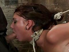 Take a look at these hot brunettes, one is tied up and the other one lubes her fingers and then waits until a guy ties the other honey neck. After this babe is completely immobilized the chick fingers hard that fur pie during the time that this babe takes a hard cock in her mouth. She's getting fucked in her face hole and twat in the same time and the fact that she's tied up is only increasing her pleasure, what a slut!