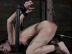 Clamped up beauty receives her fuck holes tortured
